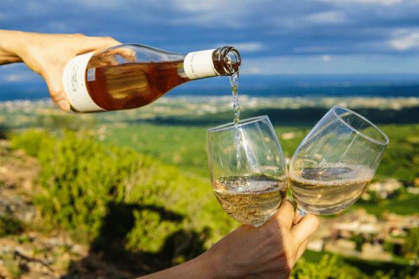 Top 10 Reasons I Love Dry Farm Wines